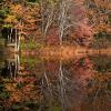 """Cape Cod Autumn"", photography by Anita Winstanley Roark.  Contact us for edition and size availability."