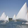 """White Sails Abound, APBY 2014 Cat Gathering Warm-up Race"", photography by Anita Winstanley Roark.  Contact us for edition and size availability."